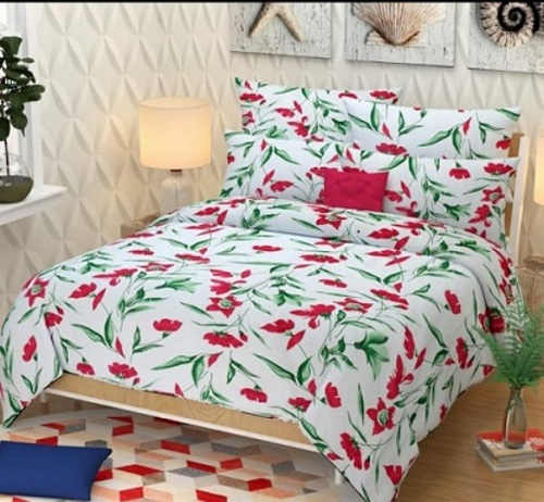 Bed Sheet with Pillow Covers..
